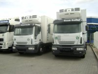 IVECO Eurocargo, Thermoking, NEW, cooling trailer